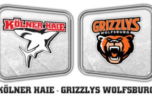Liveticker: Haie - Grizzlys; We don't play this game to lose