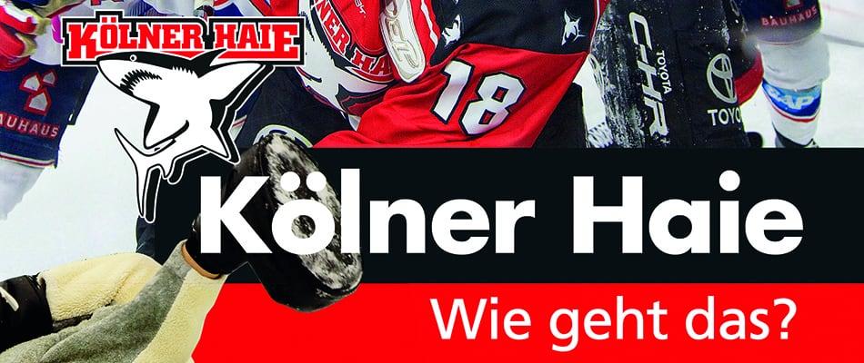 Cover des neuen Buches: Kölner Haie - Wie geht das?